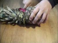 Fantastyczny sposób jak obrać ananasa