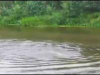 Kiedy noga dotknęła coś w jeziorze