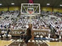 Harlem Shake kibice koszykówki