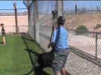 Puma Amazing Stunts