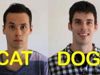 Cat-Friend vs. Dog-Friend 2