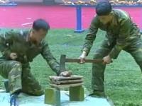 Pokaz sprawnosci zolniezy koreanskich