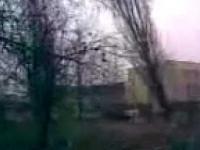 Składane drzewo