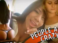 People are CRAZY! - Te kocie ruchy