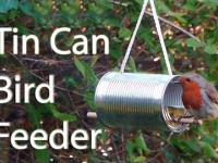 How to Make Bird feeder box