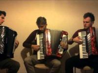Viva La Vida na Akordeonach