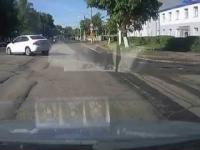 Biegi płotkarskie - Łoś na drodze