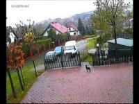 Kurier GLS uszkadza zaparkowany samochód i odjeżdża