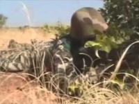 Trening Malijskich żołnierzy