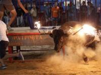 Nie igraj z płonącymi rogami byka