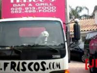 Pies i kierownica