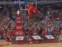 Benny, czyli byczek z Chicago Bulls