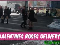 Doręczanie róż na Walentynki.