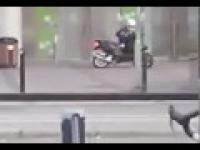 Próba ucieczki po napadzie na bank