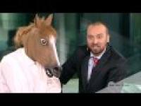 Wawawasz wali konia na wizji