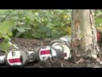 Robot wchodzący na drzewo