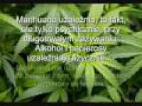 PRAWDA o marihuanie ! ! legalizować !