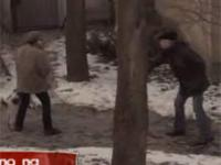 Dziadek rzuca psią kupą