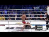 Mamed Khalidov vs. James Irvin KSW 15