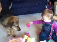 Bobas, pies, śmiech i banki mydlane