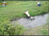 Skok Przez Wode