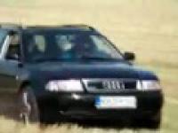 Oranie pola Audi
