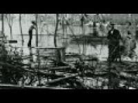 Ciekawość - Koniec świata (2011)