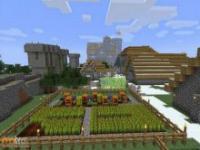 Wioska w Minecrafcie na żywo