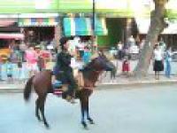 Nie drażnij Konia