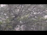 Nagranie Tornada, które przeszło dzisiaj w pobliżu Tokio