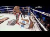 Mamed Khalidov vs Rodney Wallace Amazing KO KSW