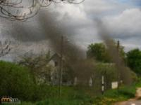 Atak komarów na Białorusi