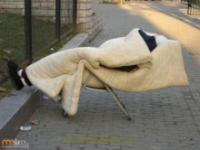 Chińczycy śpią gdzie popadnie