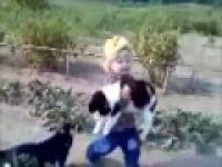 dziecko ratuje kotka