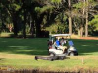 Ekstremalnie trudny golf