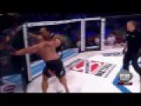 Berek na MMA Attack 3