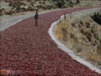 Czerwona droga w Turcji