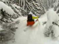 Ekstremalna jazda na nartach między drzewami