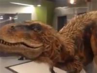 Welociraptor w biurze