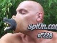 La Zap Spion #228 - kompilacja zabawnych filmików