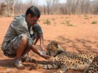 Para, która się opiekuję dzikimi kotami