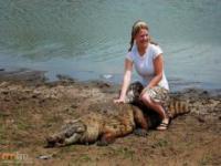 Sąsiad krokodyl