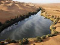 Oaza na środku Sahary