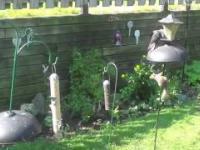 Bezczelne wiewiórka (Sassy Squirrel)