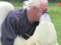 Przyjaźń ludzko- niedźwiedzia