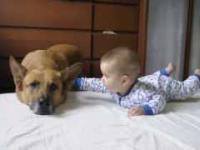 Dziecko i Pies - prawdziwy przyjaciel