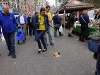 Zdalnie sterowany szczur z kawałkiem pizzy straszy w Nowym Jorku