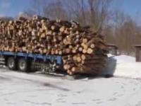 Szybki rozładunek drewna