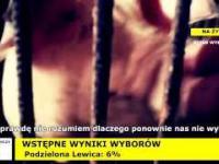 Oto kogo Polacy wybrali do sejmu. Smutna prawda o nowej władzy.