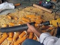 Czyszczenie kukurydzy